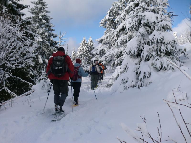 wintersport in de Vogezen